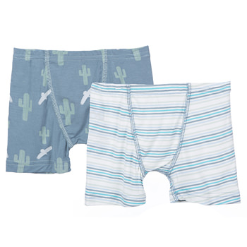 Boxer Briefs (Set of 2) in Dusty Sky Cactus & Boy Desert Stripe