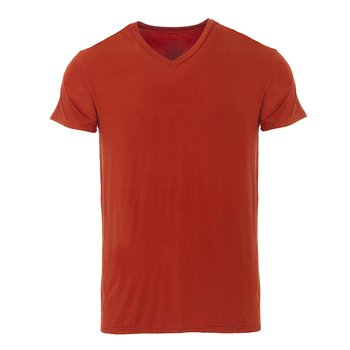 Men's Short Sleeve V-Neck Tee in Red Tea